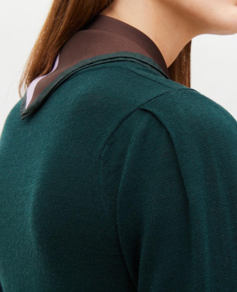 Pullover aus Merinowolle mit Rundhalsausschnitt Scarab Molineta