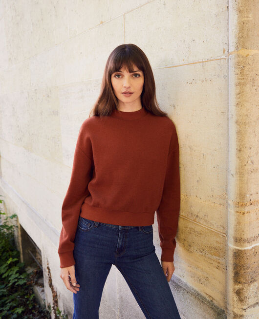 Kurzes Sweatshirt BRANDY BROWN