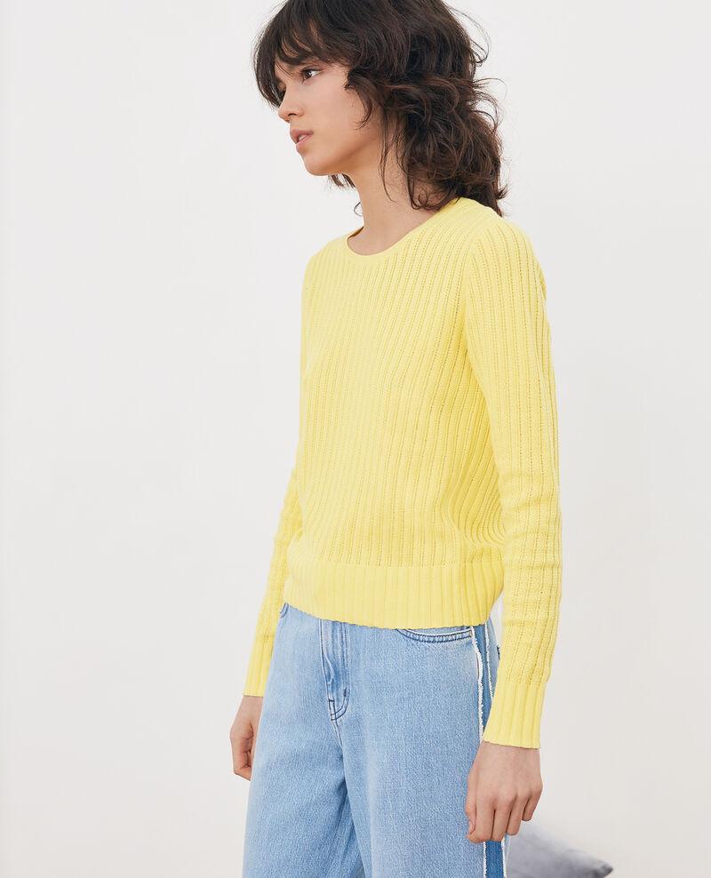 Kurzer Pullover Lemon Funky