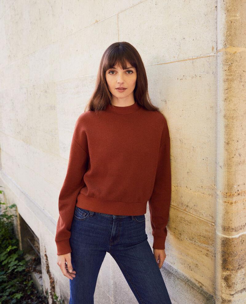 Kurzes Sweatshirt Brandy brown Jizela