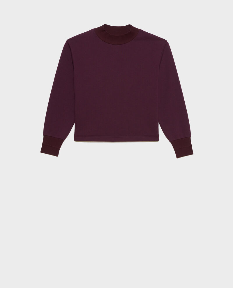 Sweatshirt mit Stehkragen Potent purple Pexone